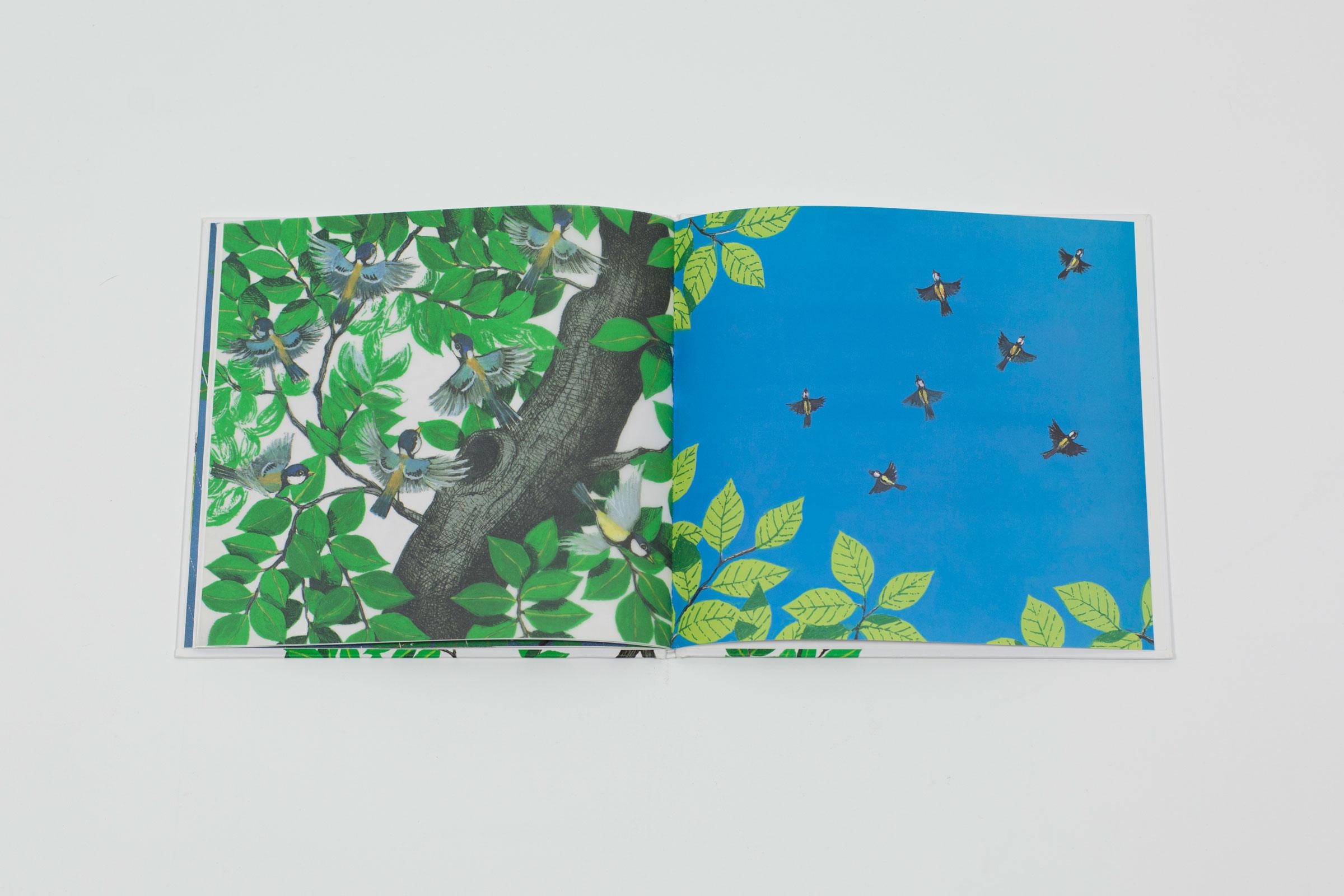Les petits oiseaux susumu shingu livre jeunesse 2006 for Les petits oiseaux