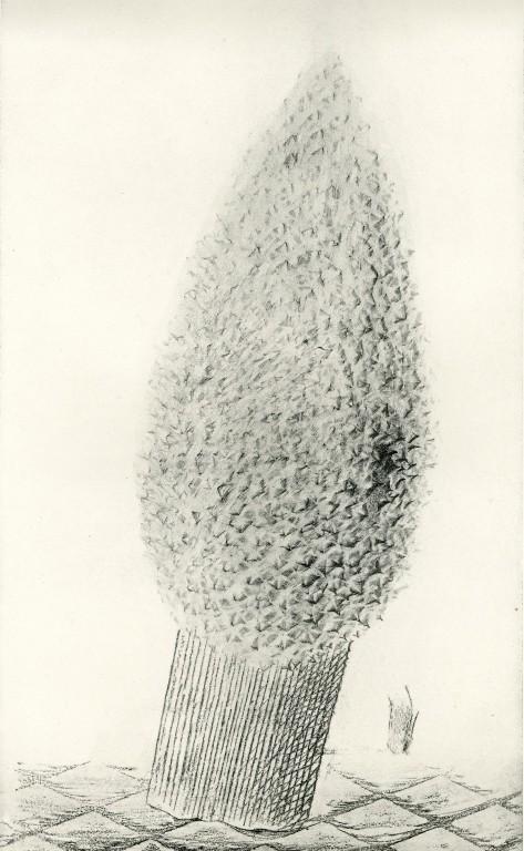 1926 — Histoire Naturelle — Max Ernst<br/>© Jeanne Bucher Jaeger